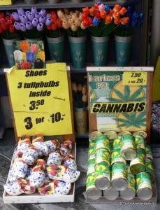 Grow your own Cannabis